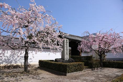 Myoukenji1804052