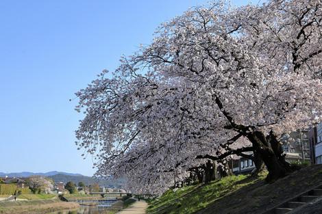 Takanogawa1804032