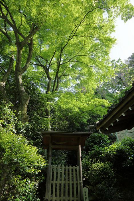 Seikanji1805056