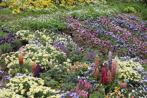 Gardenmuseumhiei1805285