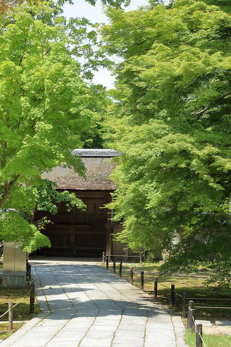 Toufukuji1805205
