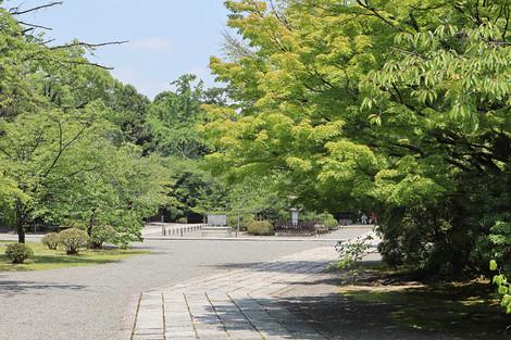 Kouryuji1807032