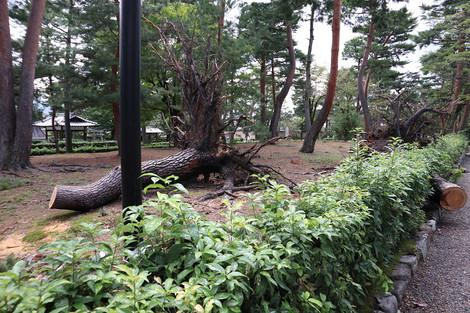 Syoukokuji1809212