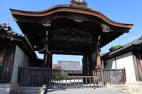 Ninaji1811062