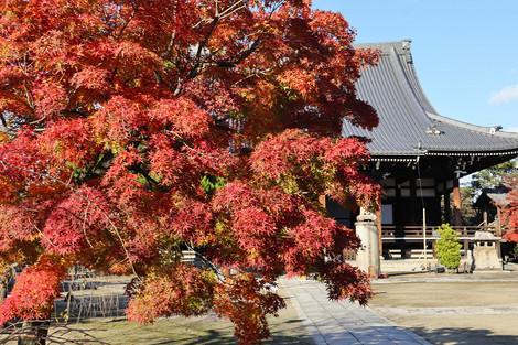 Myoukenji1811302