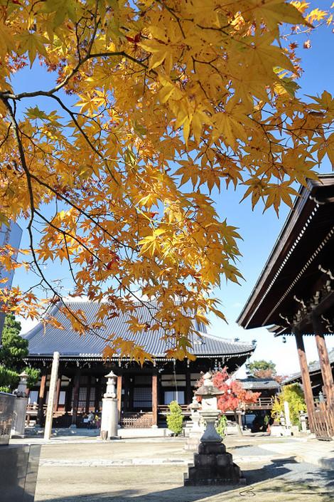 Myoukenji1811305
