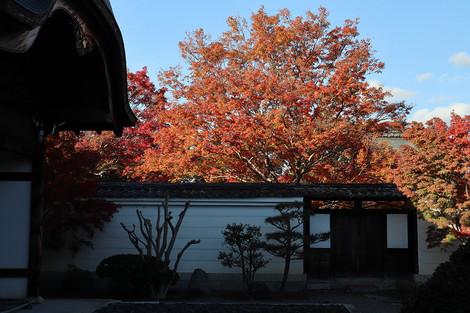 Mypukakuji1811296