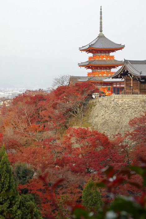 Kiyomizudera1812031