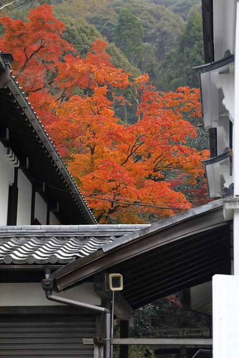 Kiyomizudera1812032