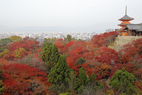 Kiyomizudera1812035