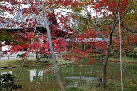 Koudaiji1812083