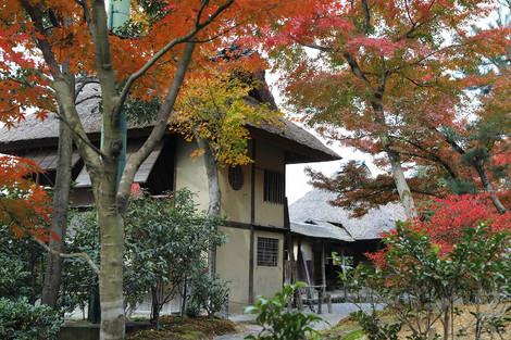 Koudaiji1812085