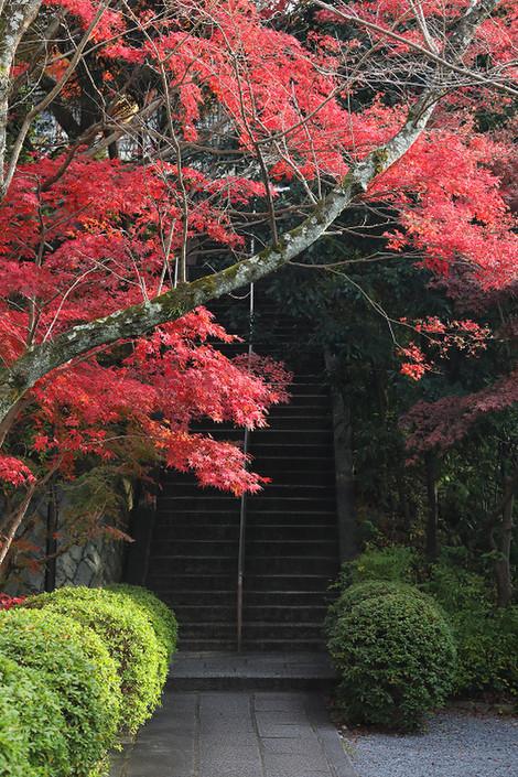 Kousyouji1812052
