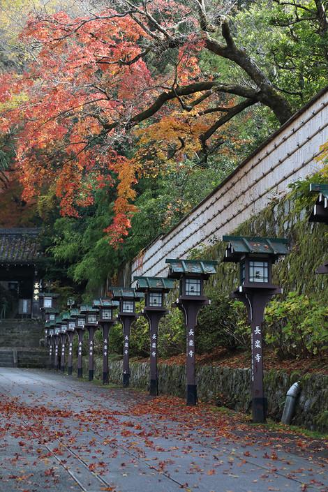 Maruyamokouen1812085