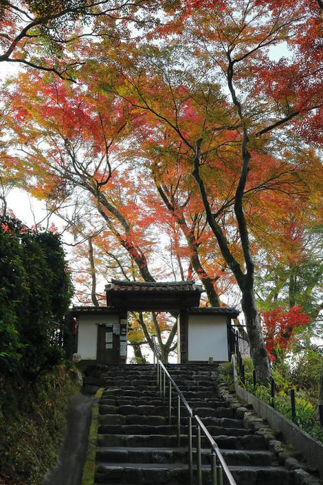 Seikanji12052
