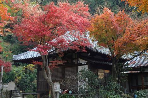 Seikanji12055